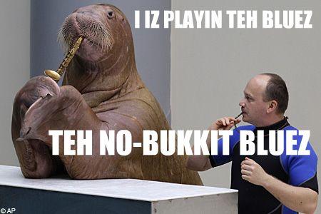 Blueslolrus_450x300